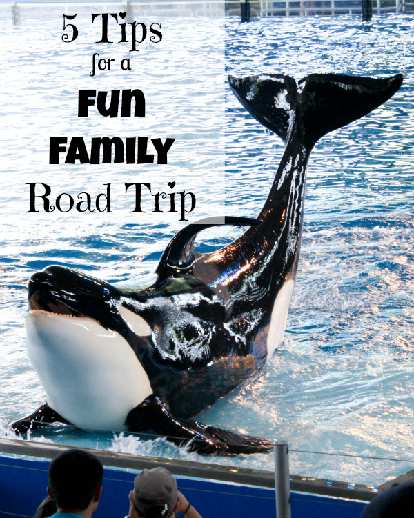 fun family road trips, family vacation, traveling with kids, traveling with children, parenting, being a mom, someone's mom