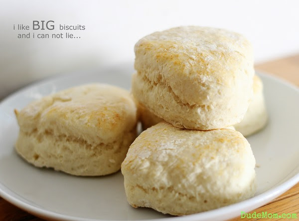 Momma Can Cook - Biscuits 1 - Copy