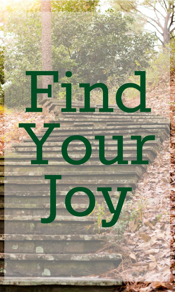 Sometimes as moms we have to look for joy in our daily lives. This year make a commitment to find your joy.